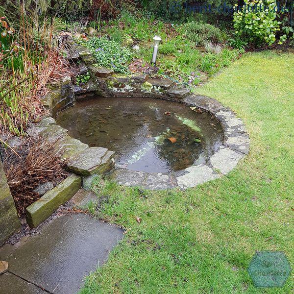 Schon traurig, so ein kahler Teich im Regen.