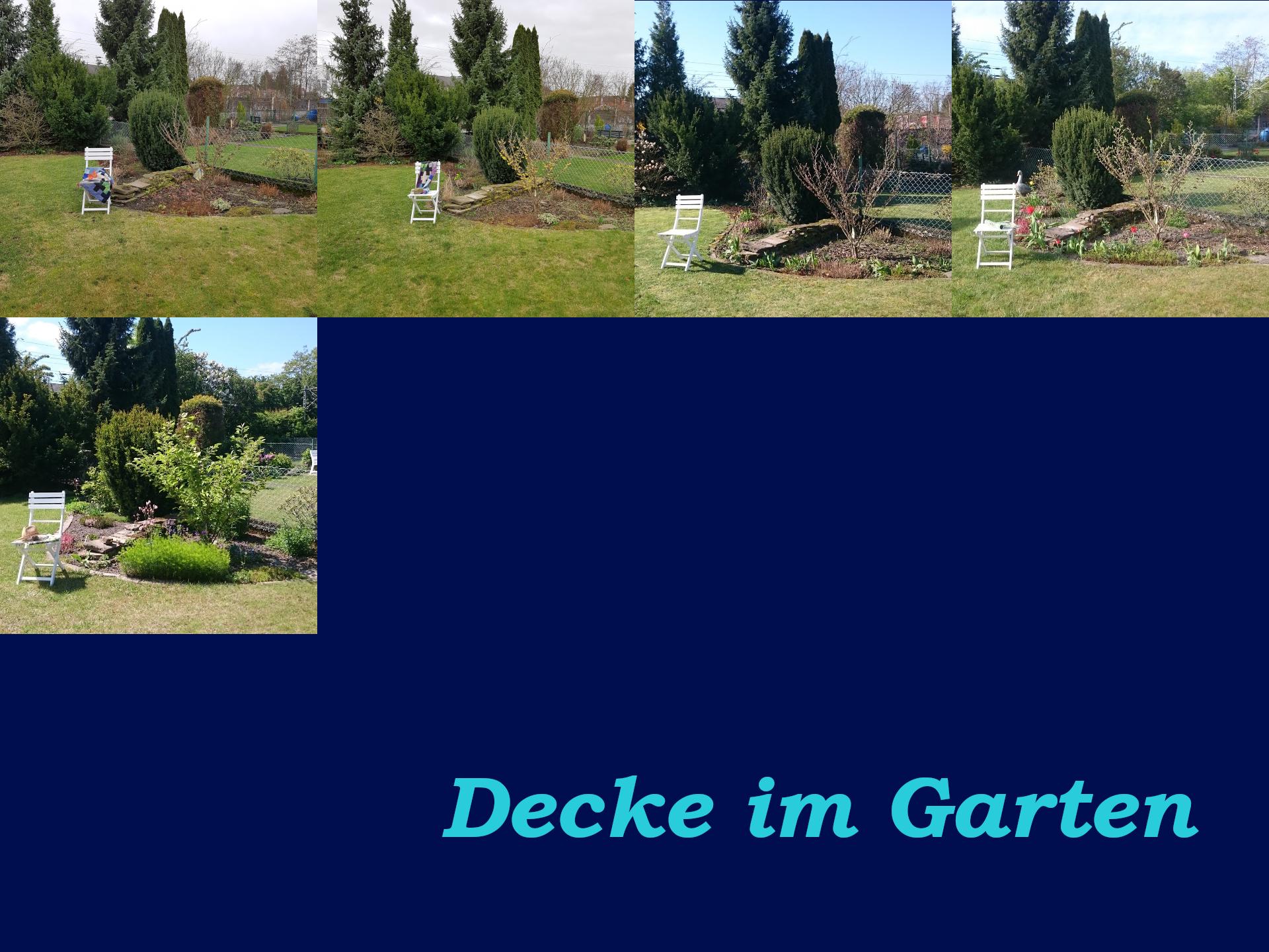 Die Veränderungen im Garten sind deutlich sichtbar. Es wird Sommer.